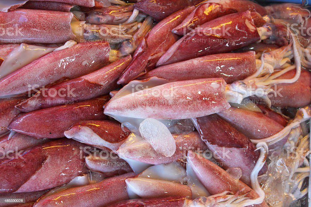 pile of cuttlefishes in seafood market stock photo