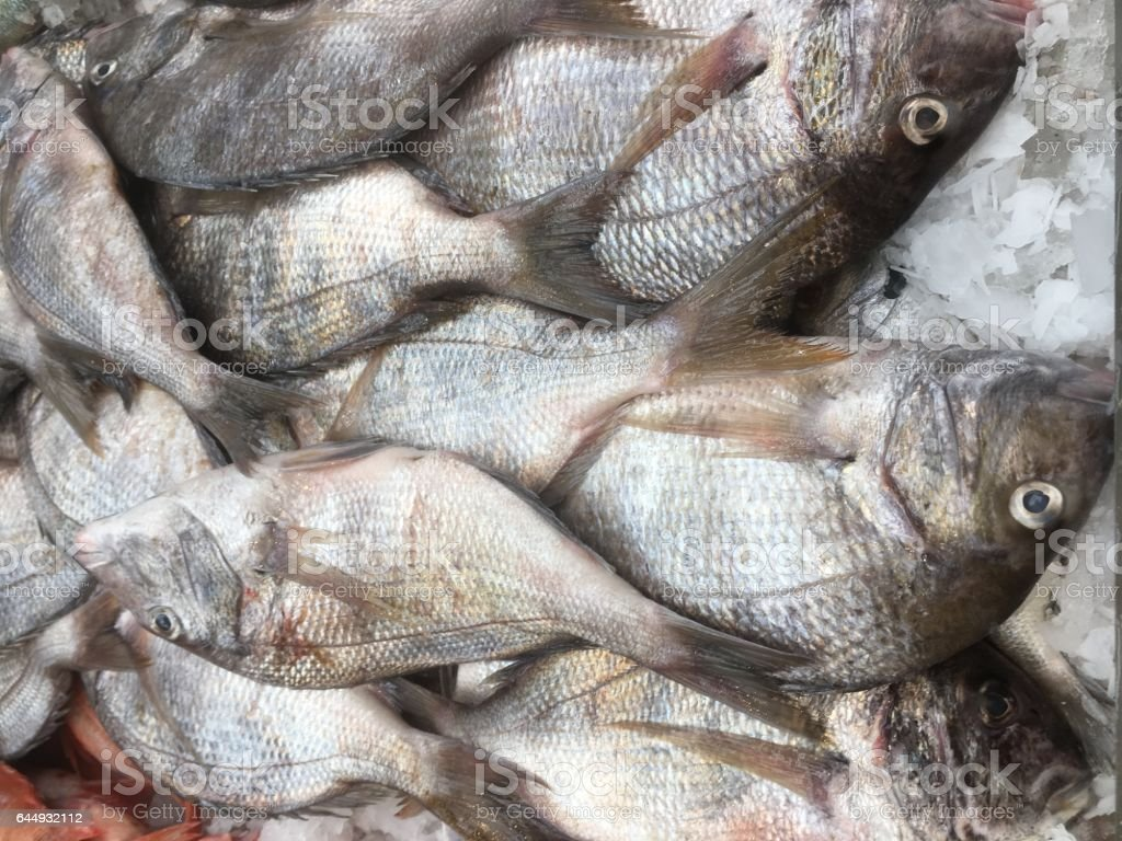 Pile of dead fish on ice at the outdoor food market in Flushing, Queens, New York City. Chinatown market with fresh fish. stock photo