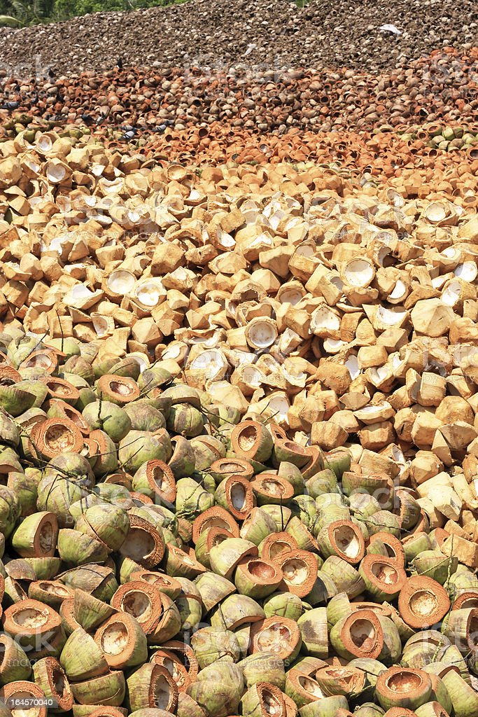 Pile of discarded coconut husk royalty-free stock photo