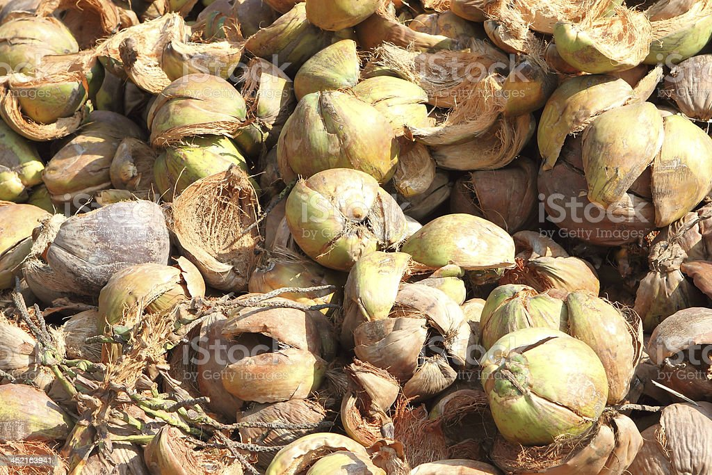 Pile of discarded coconut royalty-free stock photo