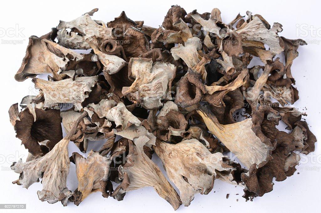 Pile of dried Horn of Plenty mushrooms over white stock photo
