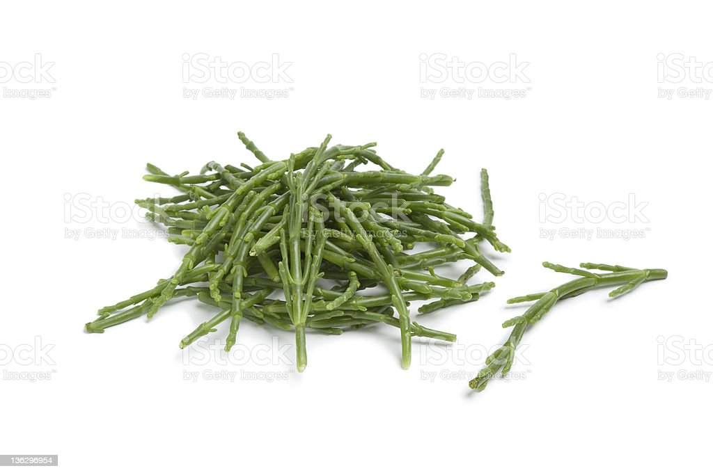 A pile of fresh green Samphire stalks stock photo