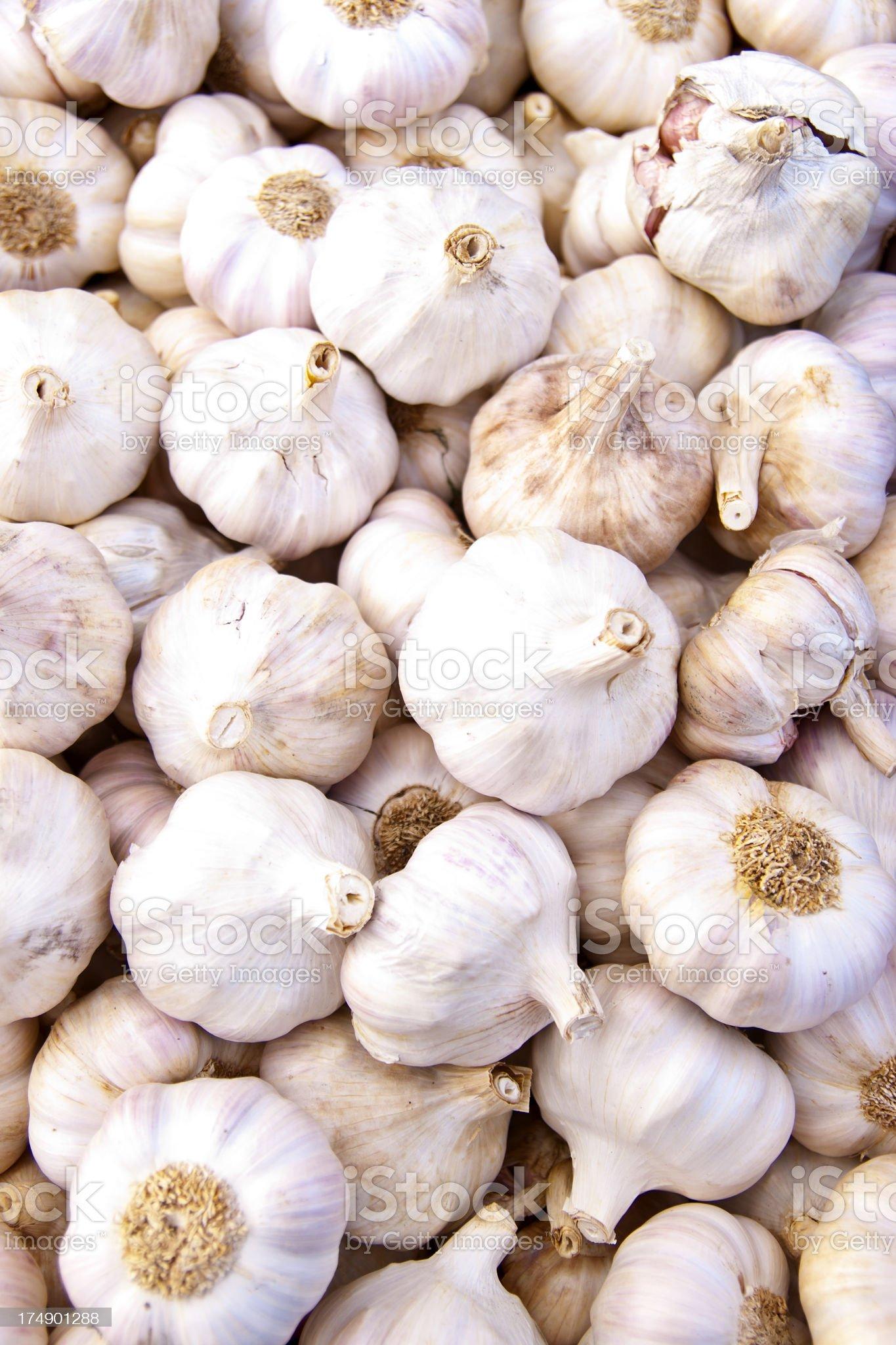 Pile of Garlic royalty-free stock photo