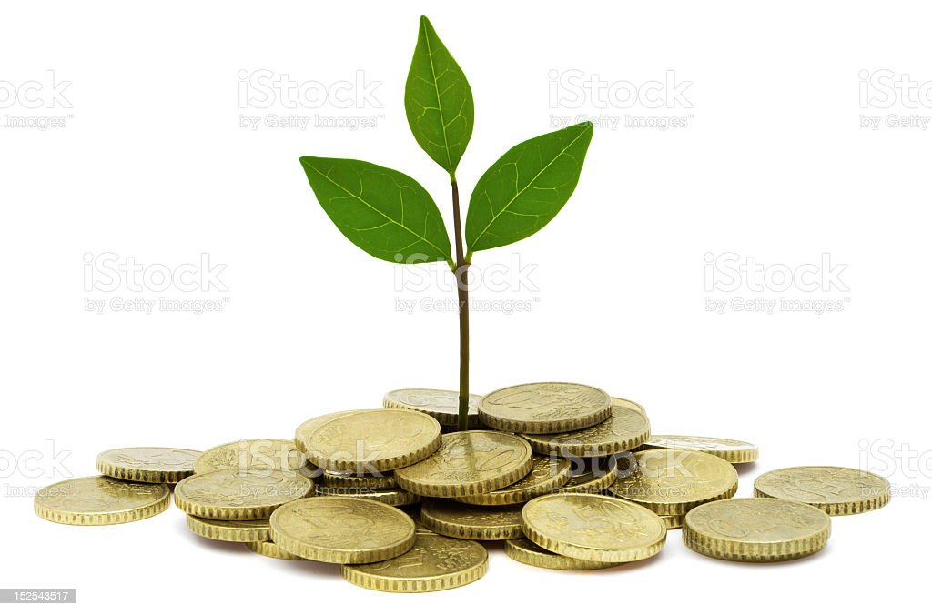 A pile of gold coins with leaves growing out of the center stock photo