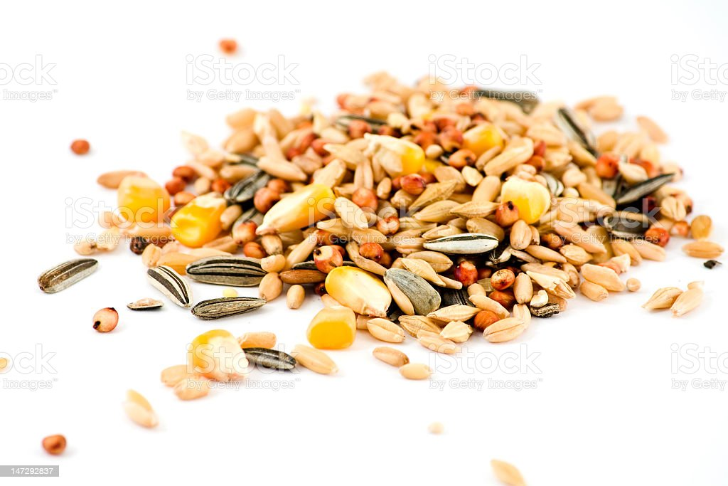 Pile of grains and seeds on a white background royalty-free stock photo