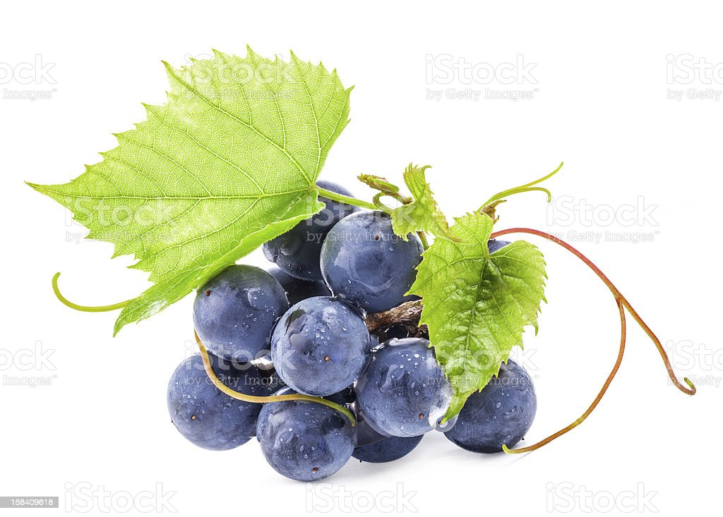 A pile of grapes with green leaves stock photo