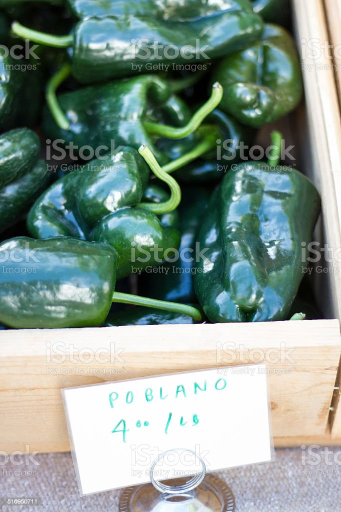 Pile of Green Poblano Chile Peppers in Wooden Crate stock photo