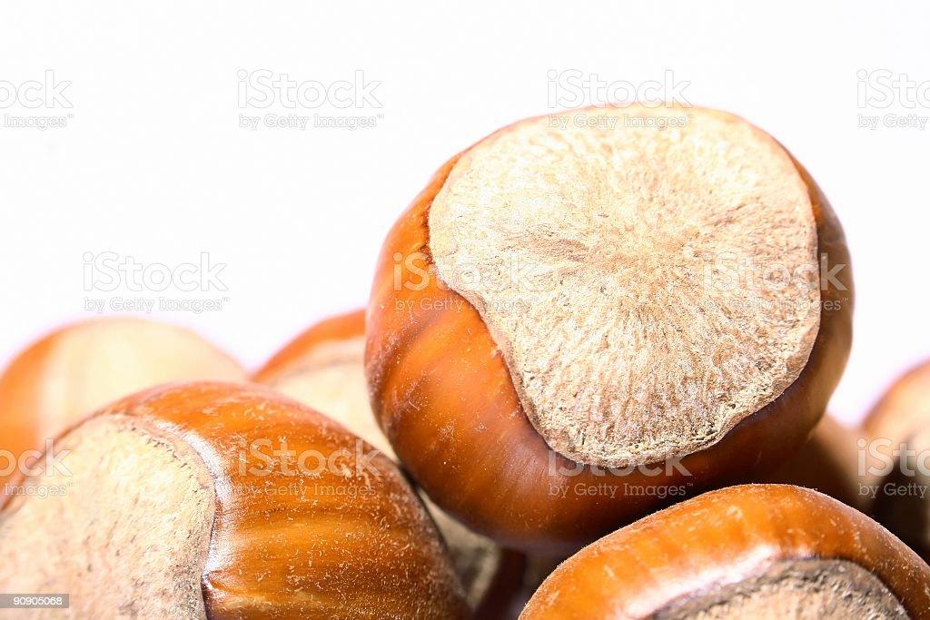 pile of hazelnuts isolated on white stock photo