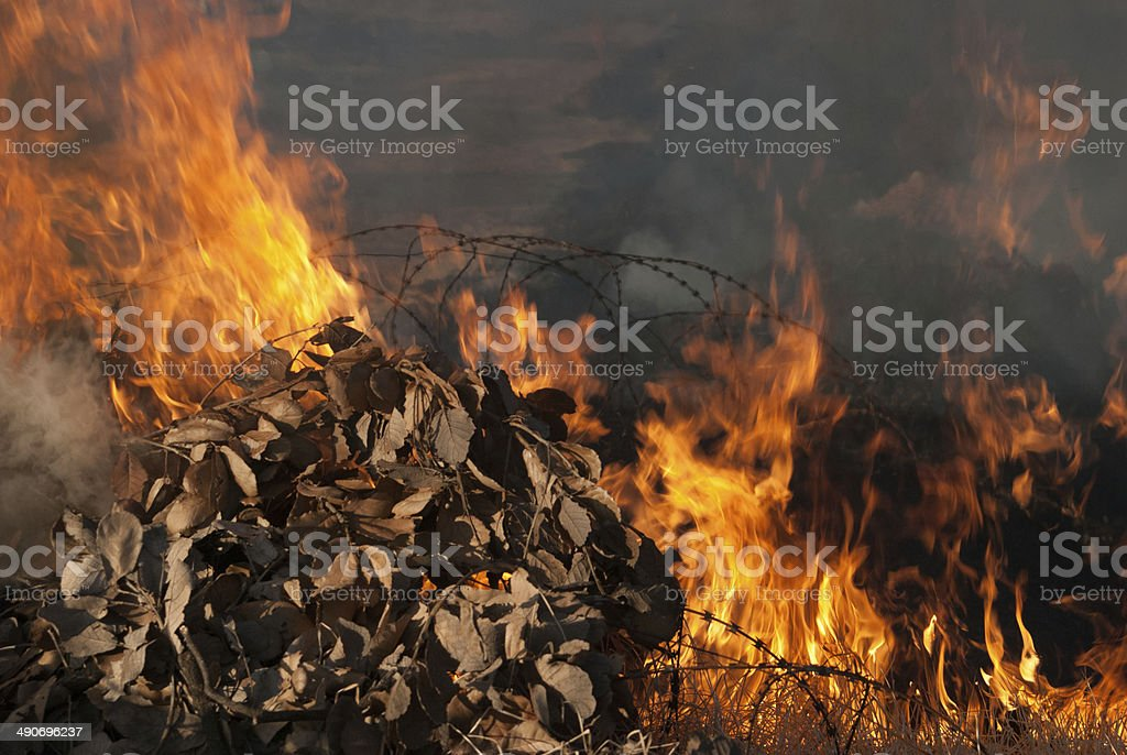 Pile of leaves burn with flames and smoke stock photo