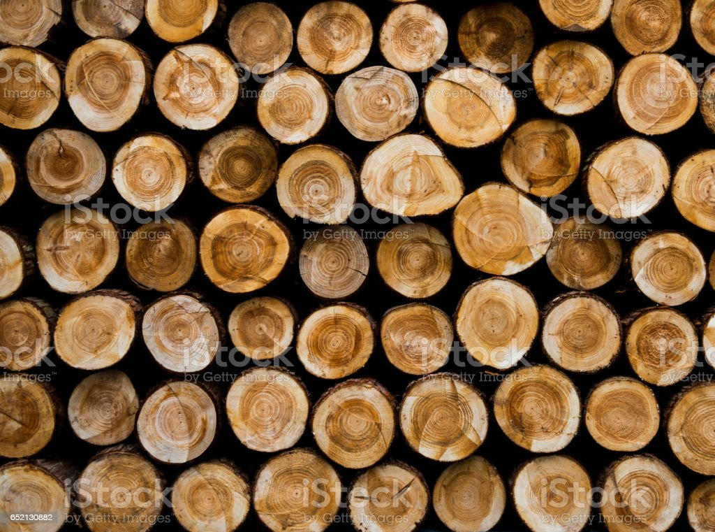 Pile of log wood background stock photo