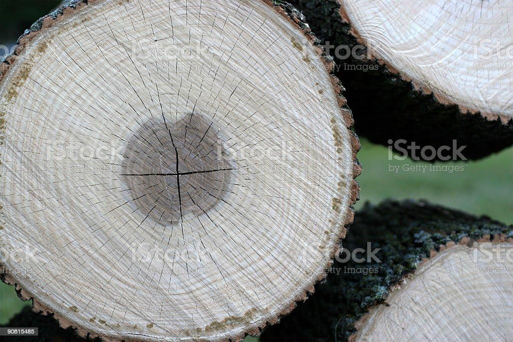 Pile of Logs (timber, lumber) stock photo