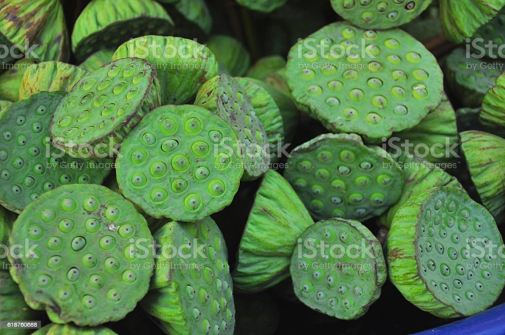 pile of lotus seed for sale in local market stock photo