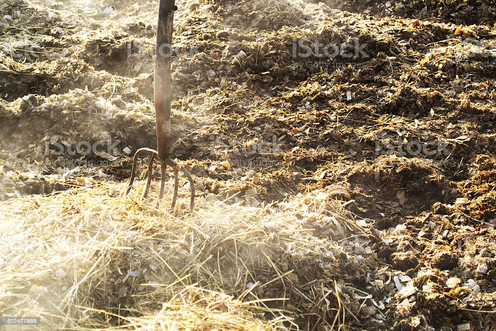 Pile of Manure stock photo