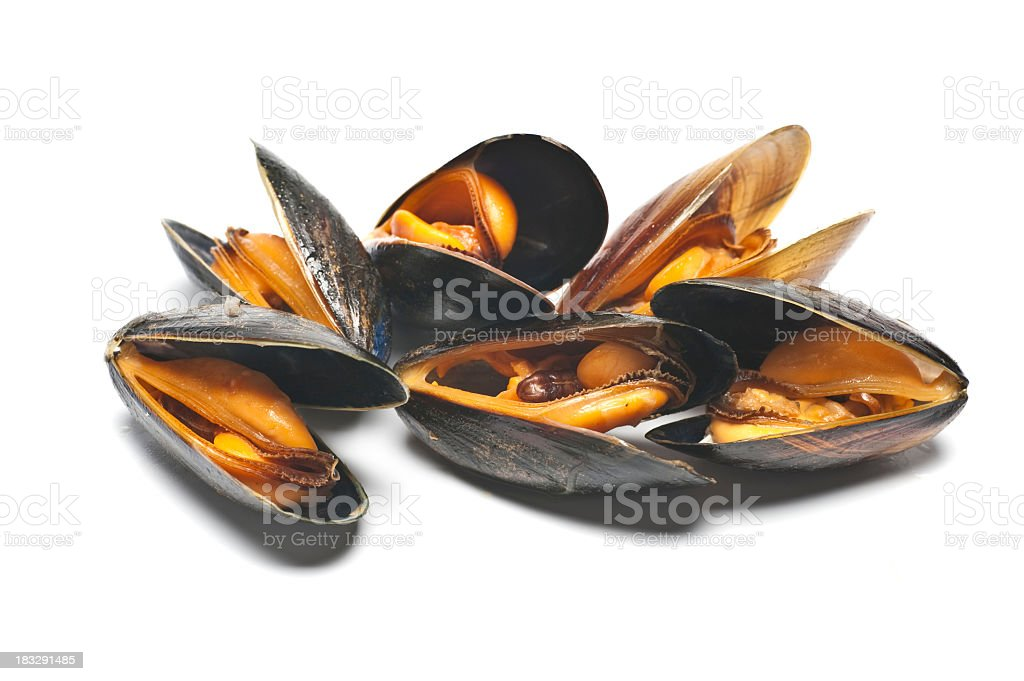 A pile of mussels on a white background stock photo
