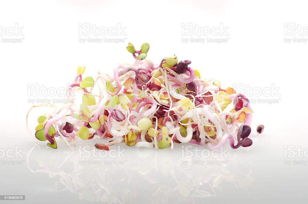 Pile of organic radish sprouts on white background. stock photo