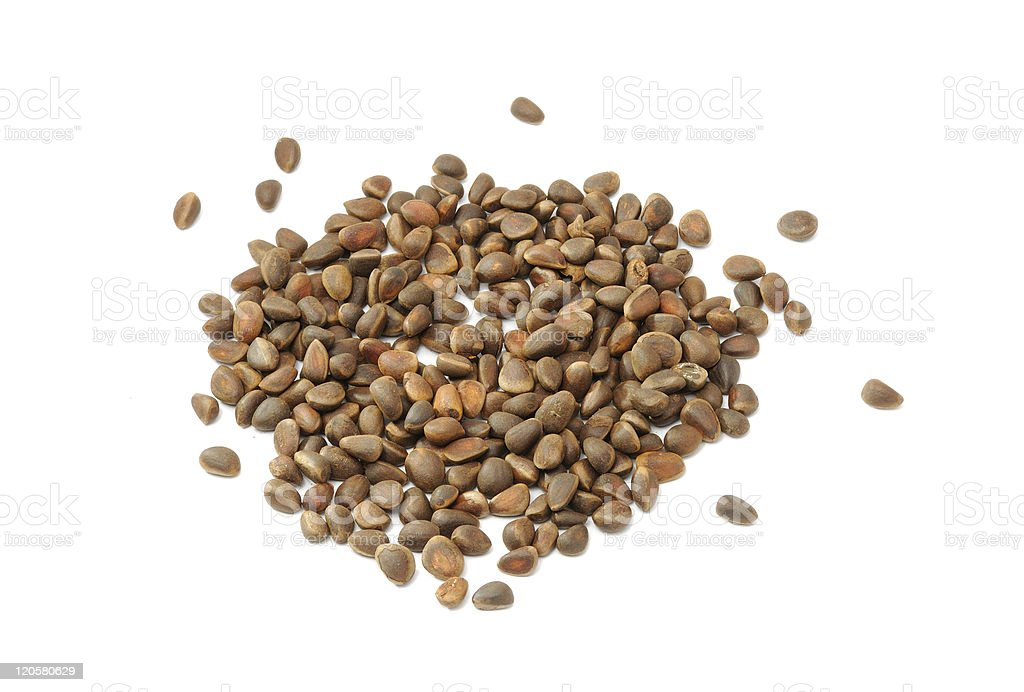 Pile of Pine Nuts royalty-free stock photo