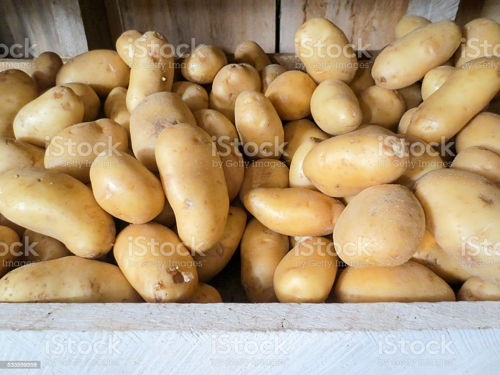 Pile of potatoes at a Belize vegetable stand stock photo