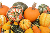 Pile of pumpkins and squashes with ornamental gourds