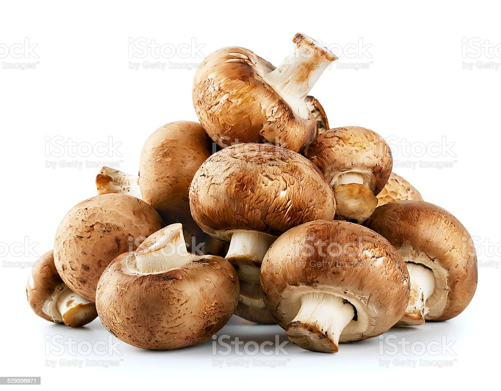 Pile of raw mushrooms stock photo