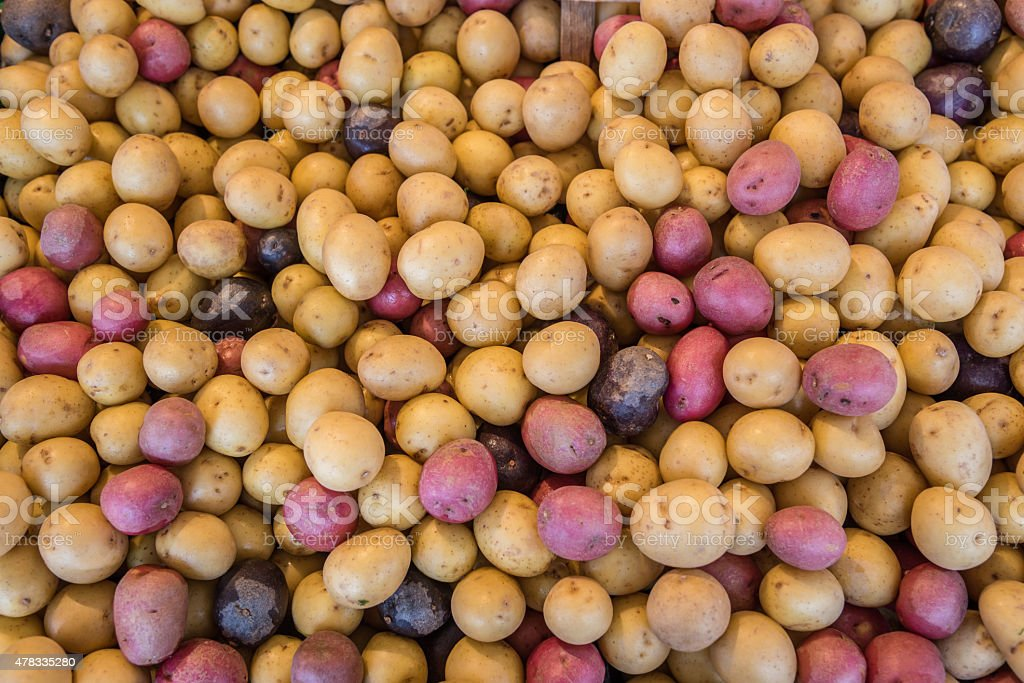 Pile of raw potatoes in local market for food ingredients stock photo