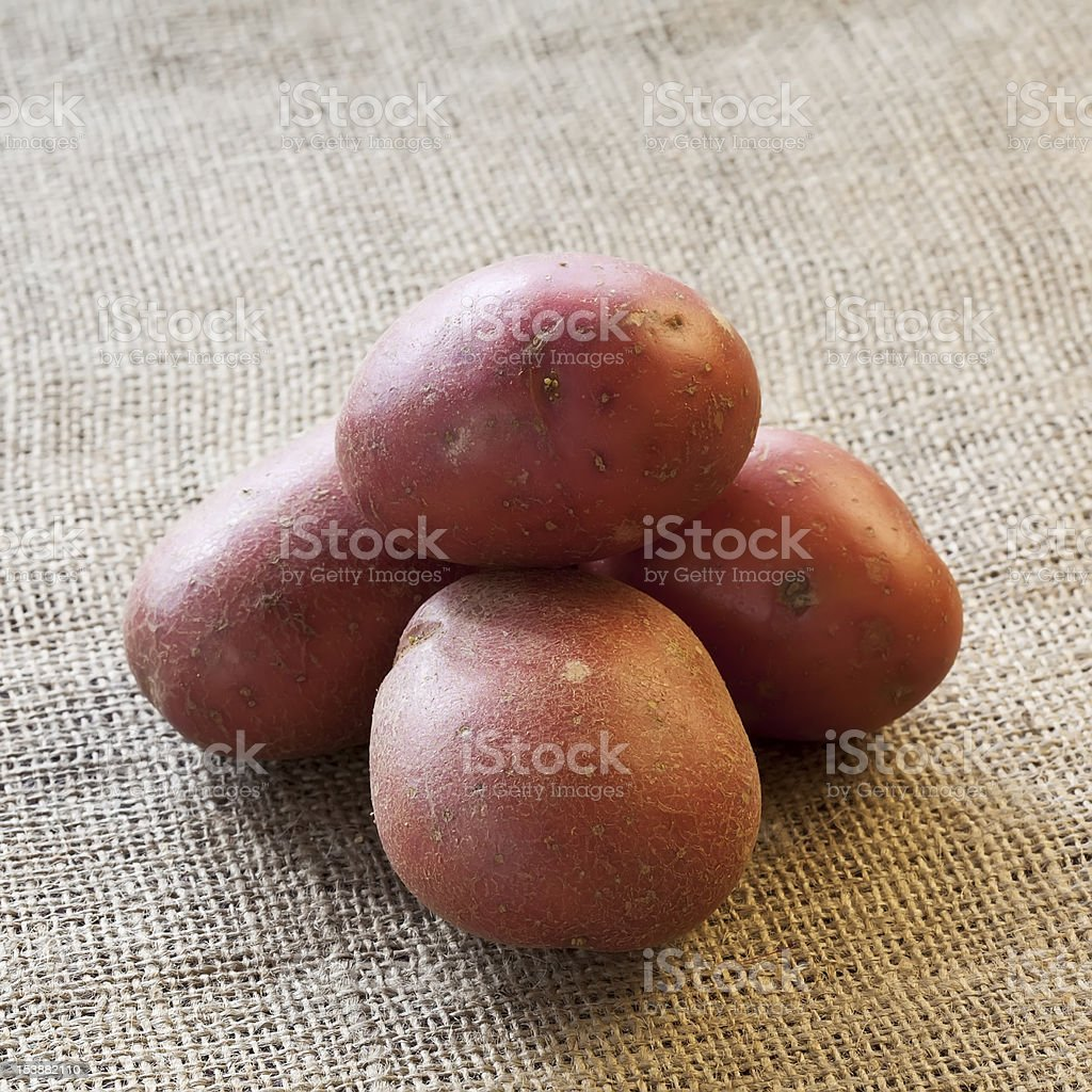 Pile of red potatoes on sackcloth royalty-free stock photo