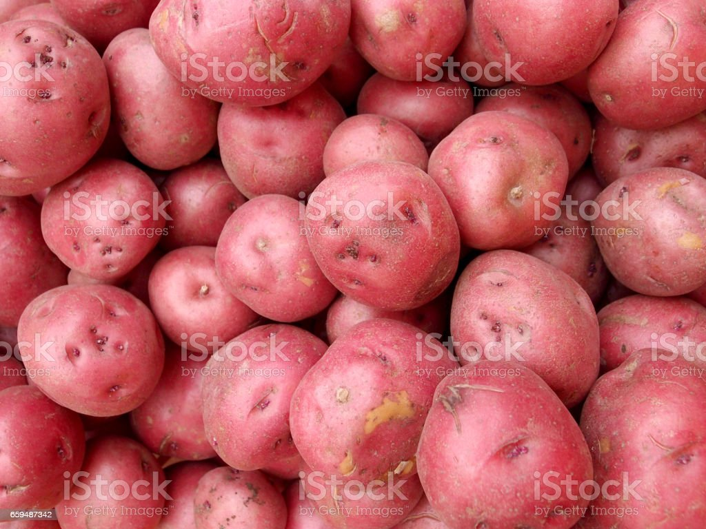 Pile of Red Potatoes stock photo