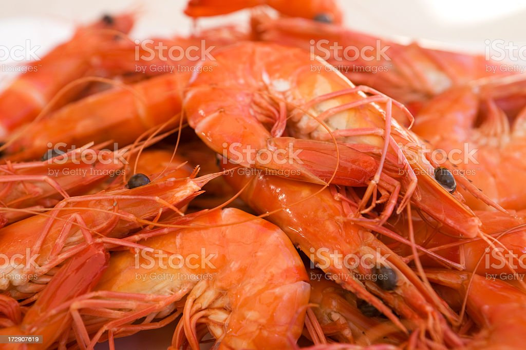 Pile of red prawns that were freshly caught stock photo