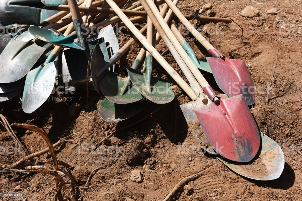 A pile of shovels on the land stock photo