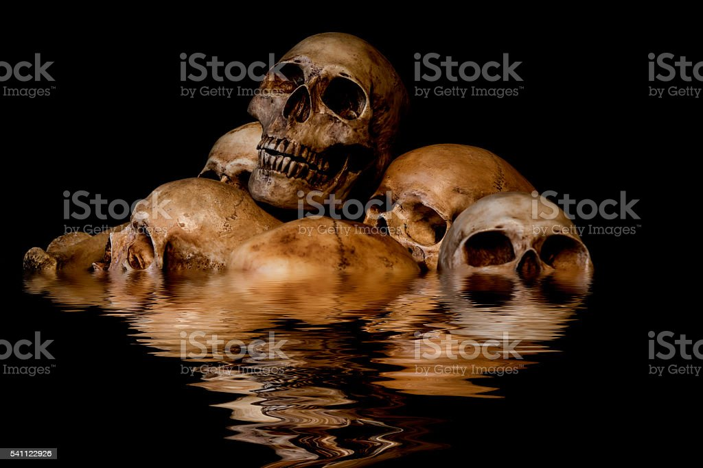 Pile of skulls and bones with water reflection stock photo