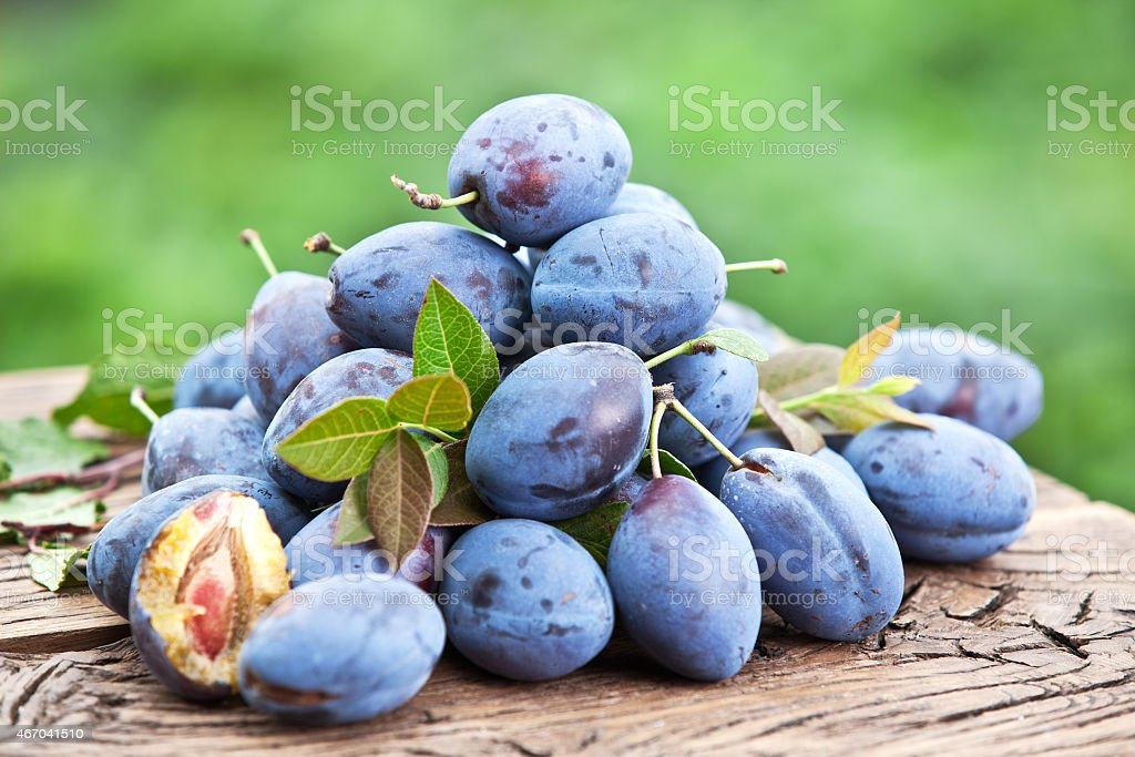 Pile of small plums and stems on wooden table stock photo