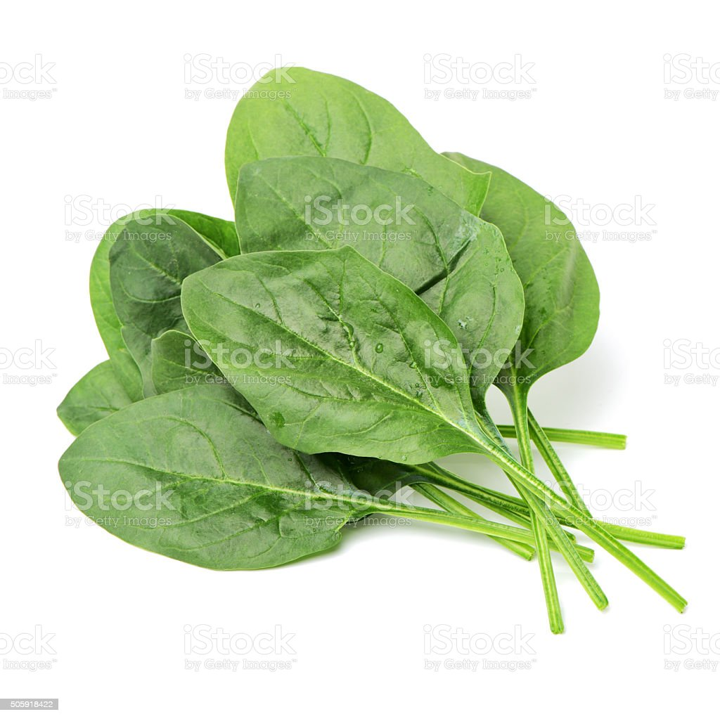 Pile of spinach stock photo