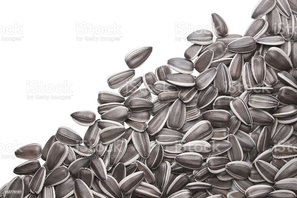 A pile of sun flower seeds over a white background  stock photo