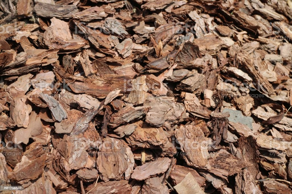 Pile of Tree Bark stock photo