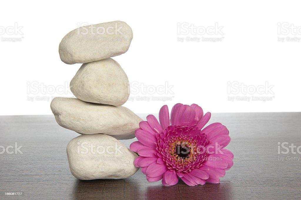 Pile of white stones beside pink gerbera royalty-free stock photo
