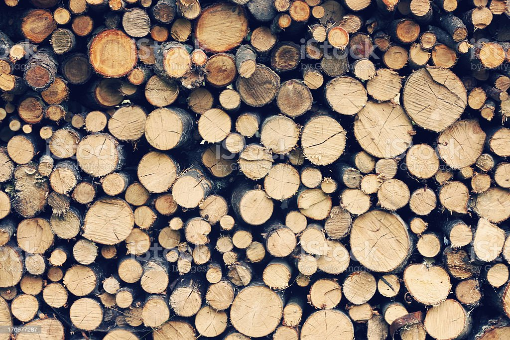 Pile of wood logs royalty-free stock photo