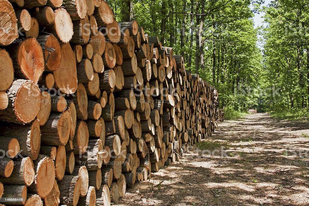 Pile of wood royalty-free stock photo