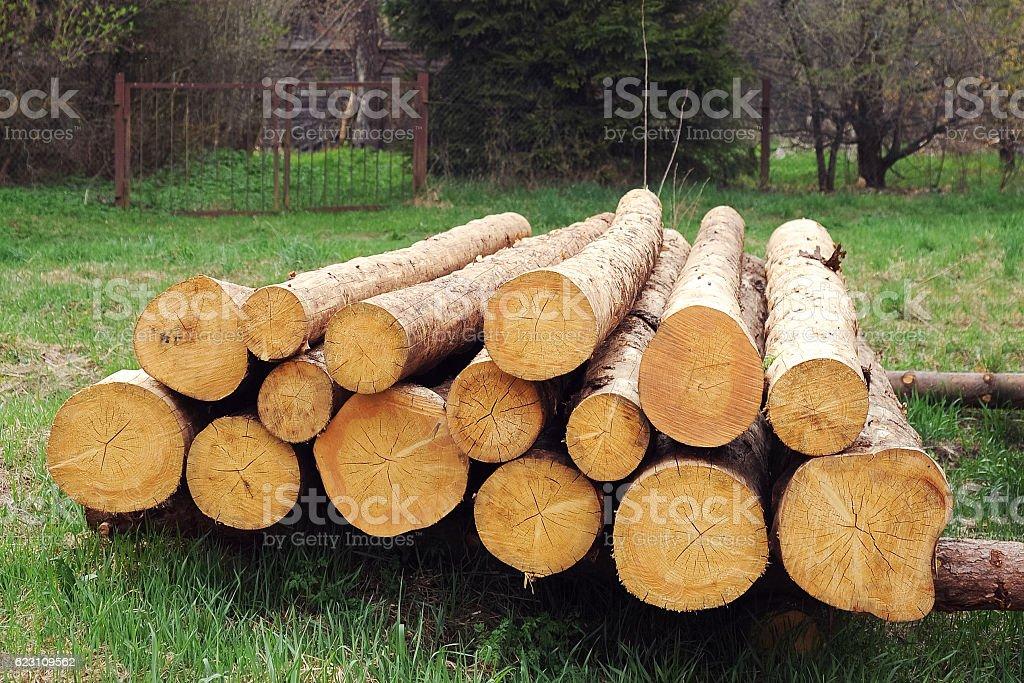 pile of wood stock photo