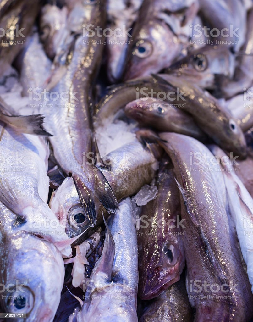 Piled Whiting sea-fish in a market stall stock photo
