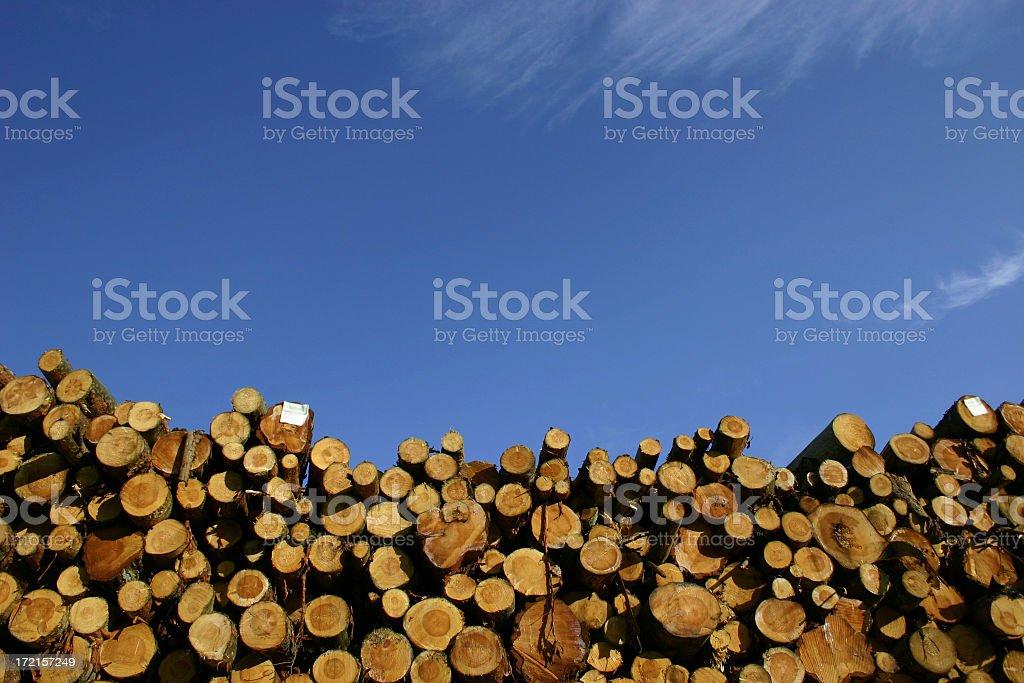 Piled wood 02 royalty-free stock photo