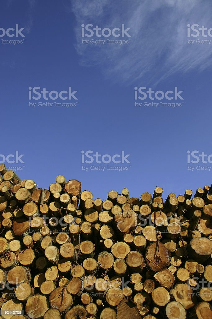piled wood stock photo