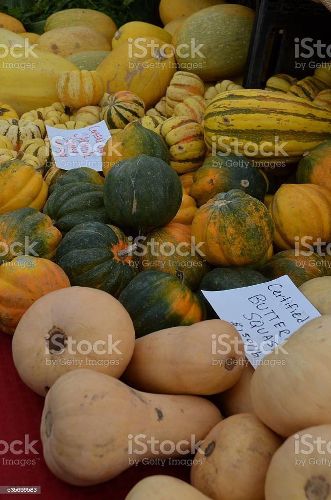 Piles of Butternut, Acorn and Carnival Squash stock photo