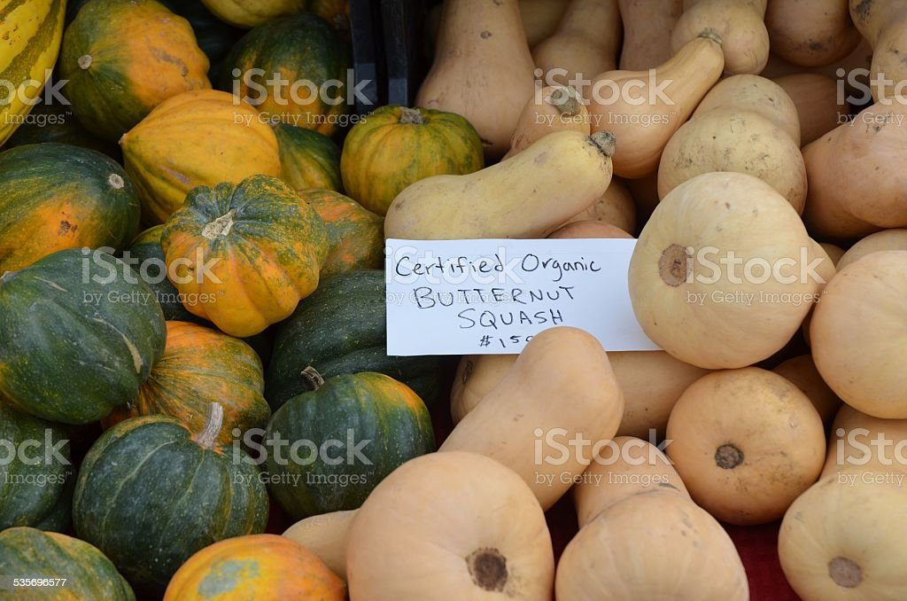 Piles of Butternut and Acorn Squash stock photo