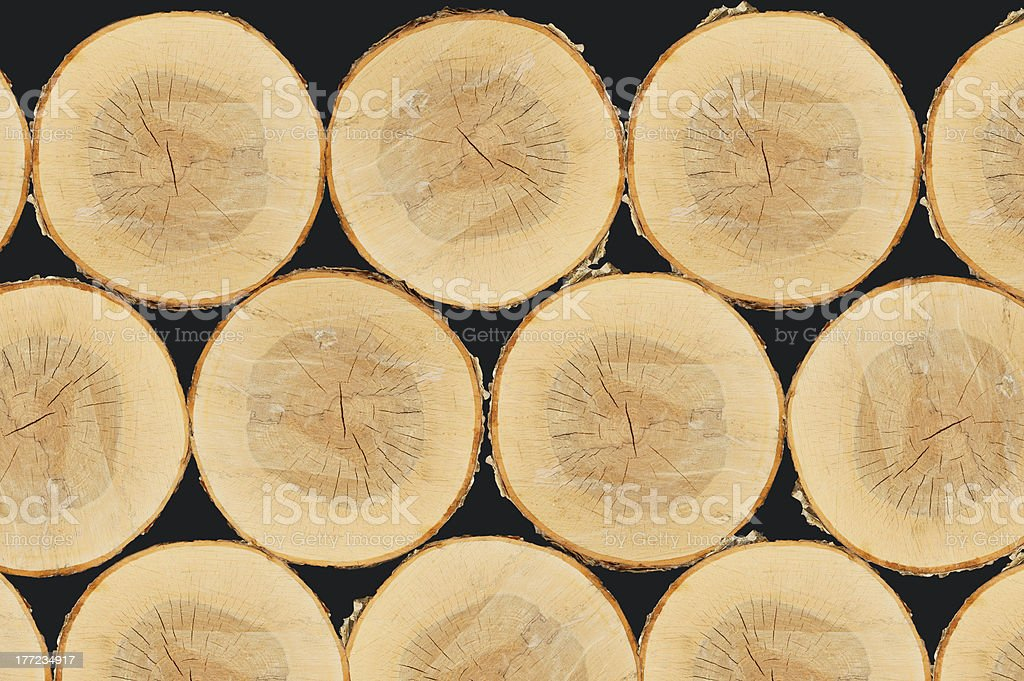 Piles of oak and pine trees royalty-free stock photo