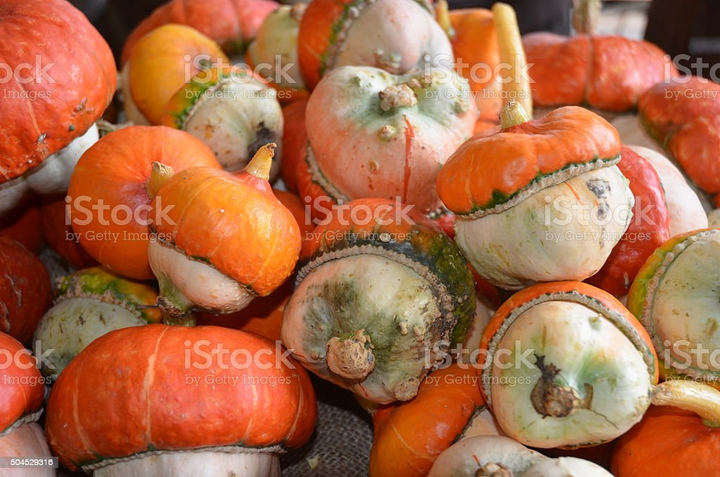 Piles of Turbin Squash royalty-free stock photo