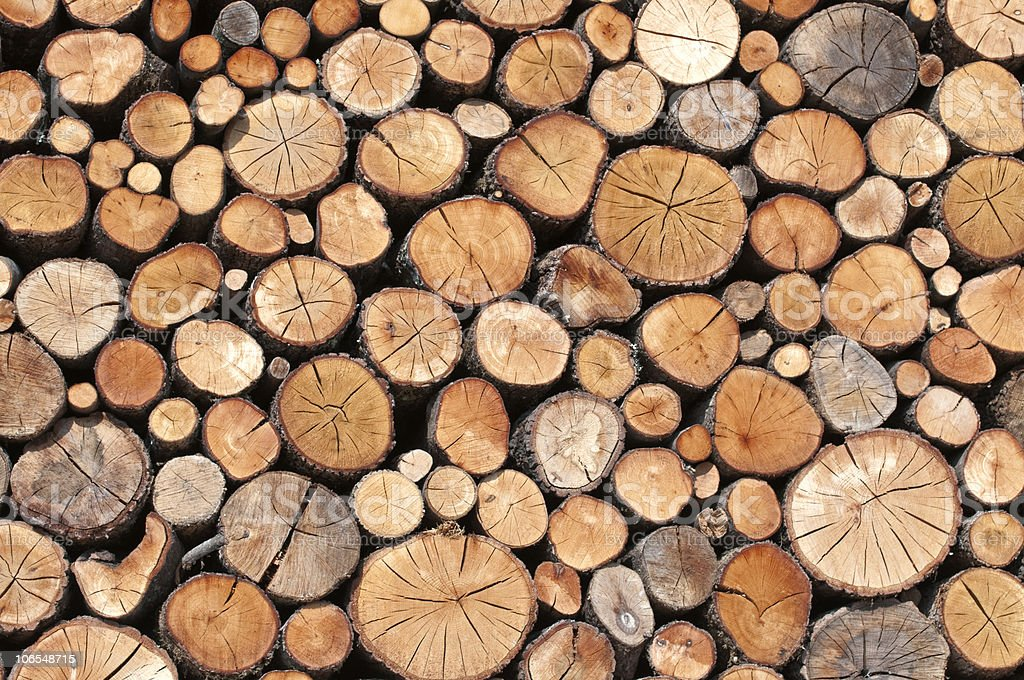 piles of wood stock photo