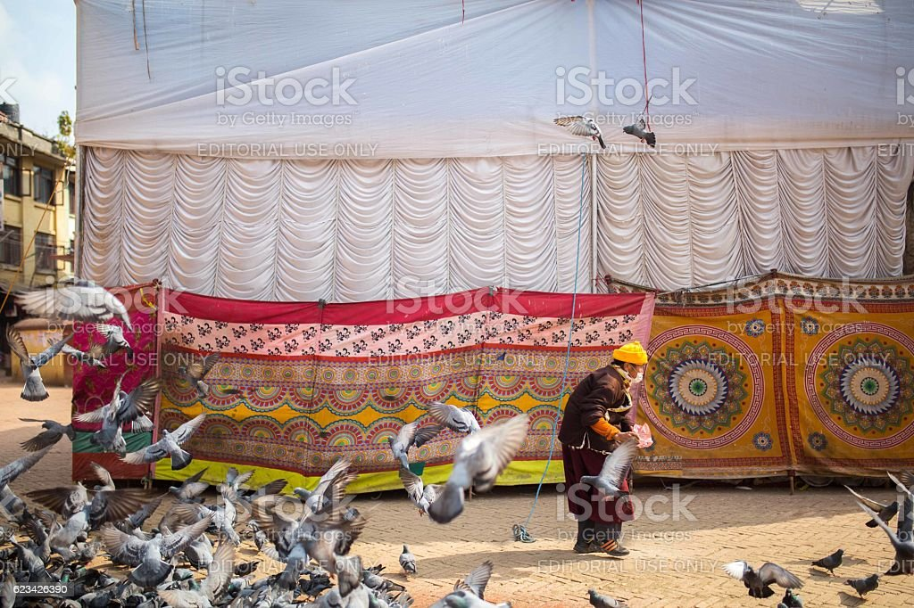 Pilgrim and Pigeons at Boudhanath Stupa in Kathmandu, Nepal stock photo
