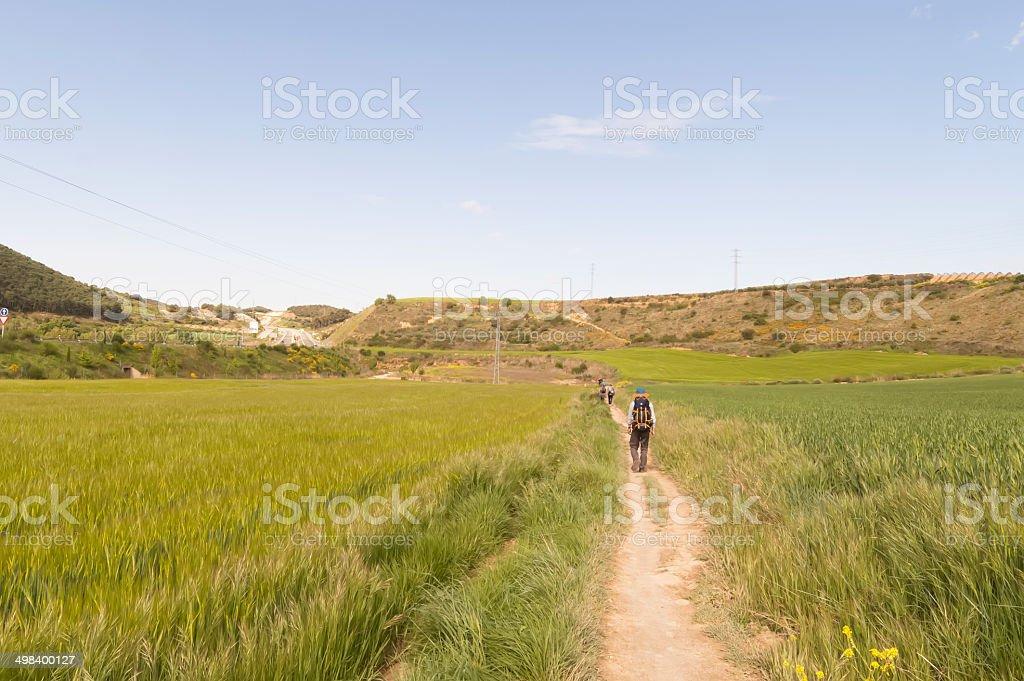 Pilgrim on the road to Santiago de Compostela in Burgos stock photo