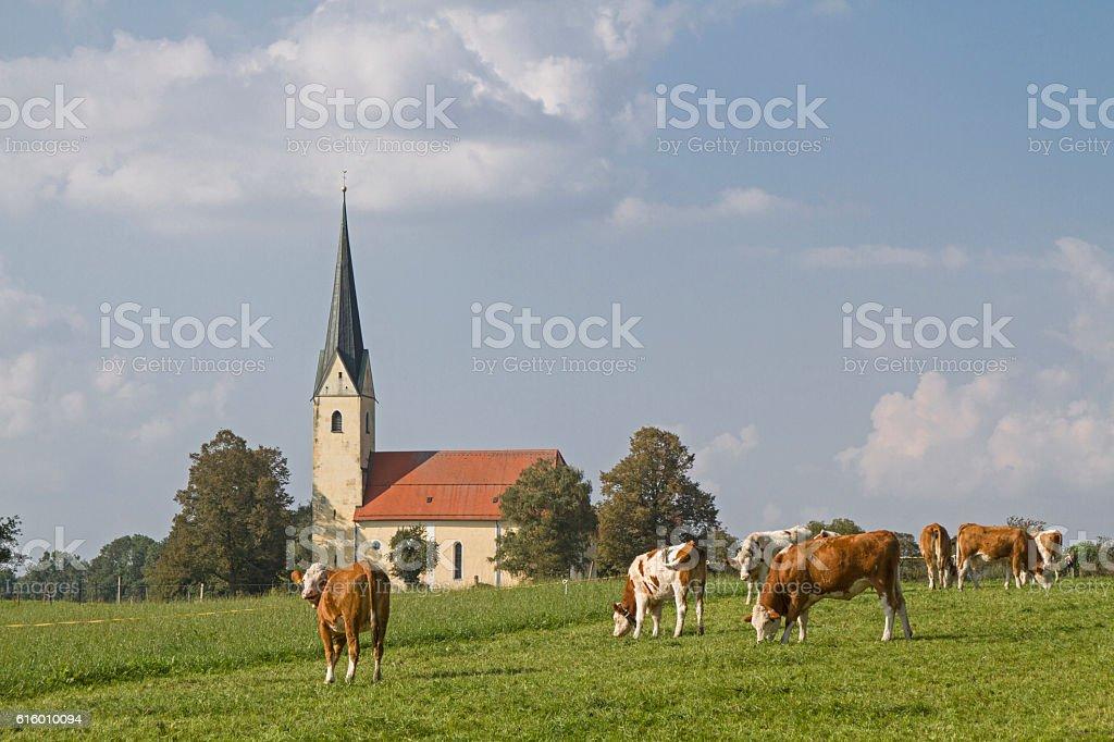 pilgrimage church of St. Leonhard in Nussdorf am Inn stock photo