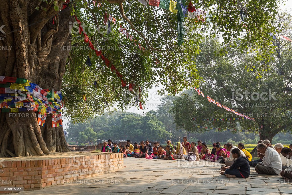 Pilgrims praying under Bodhi tree in Lumbini, Nepal stock photo