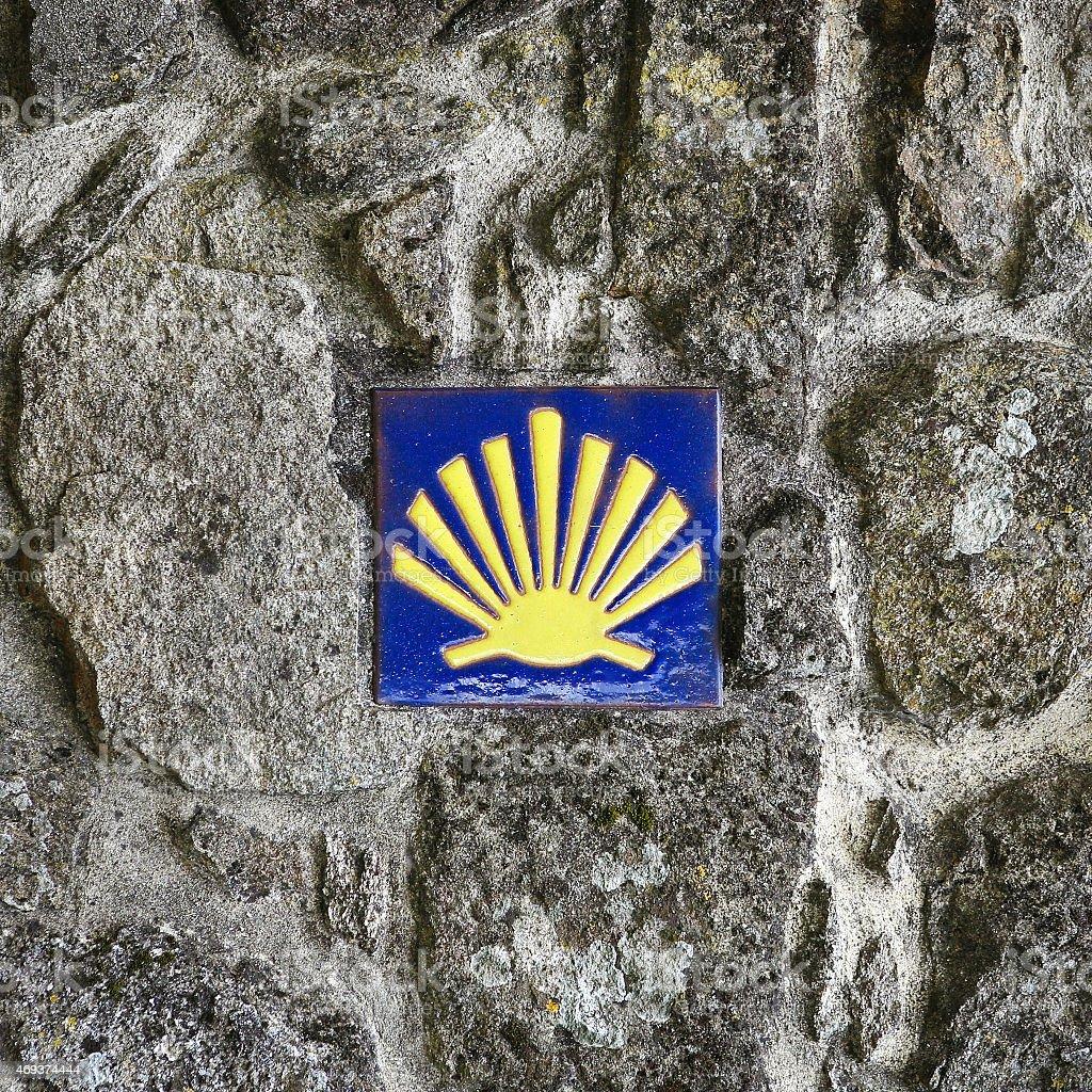 Pilgrim's Shell stock photo